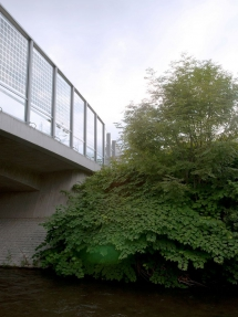 München-Pasing-Würmbrücke_Volta-Thru_PV-Ertex_VSG-Glas_2012_300dpi_1